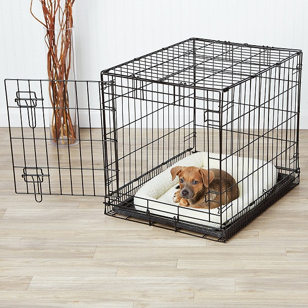 AmazonBasics Single Door Folding Metal Dog Crate