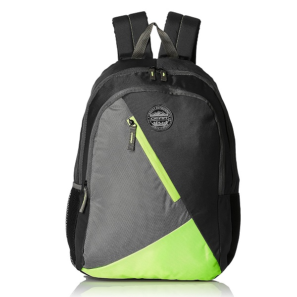 Gear 28 Ltrs Grey and Green Casual Backpack